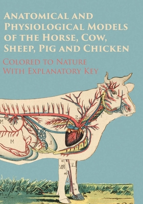 Anatomical and Physiological Models of the Horse, Cow, Sheep, Pig and Chicken - Colored to Nature - With Explanatory Key Cover Image
