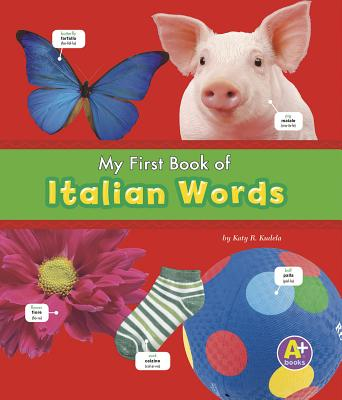 My First Book of Italian Words (A+ Books: Bilingual Picture Dictionaries) Cover Image