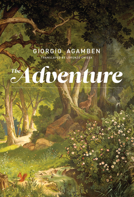 The Adventure Cover Image