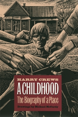 Cover for A Childhood