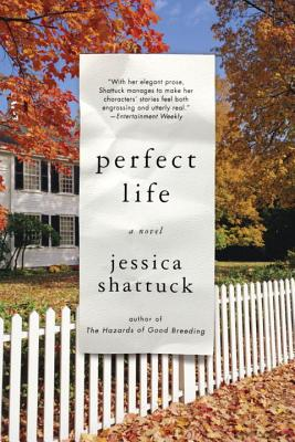 Perfect Life Cover