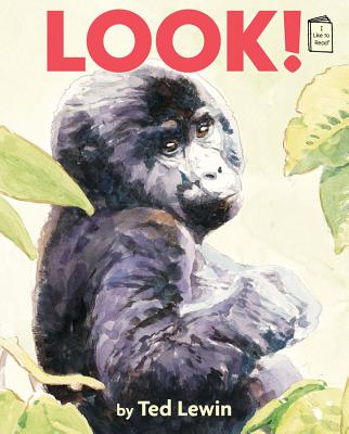 Cover for Look! (I Like to Read)
