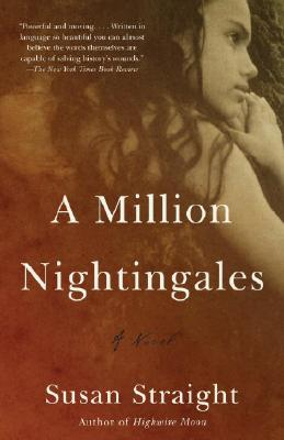 A Million Nightingales Cover Image