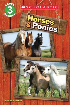Cover for Horses and Ponies (Scholastic Reader, Level 3)
