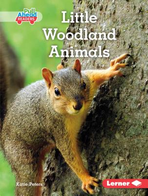 Little Woodland Animals Cover Image