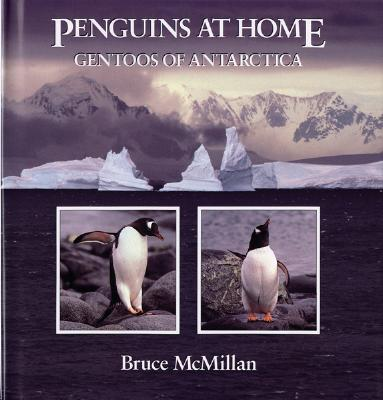 Penguins at Home Cover