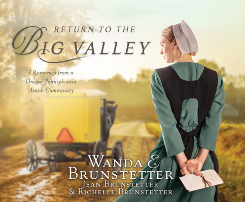 Return to the Big Valley Cover Image