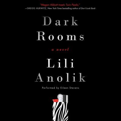 Cover for Dark Rooms Lib/E