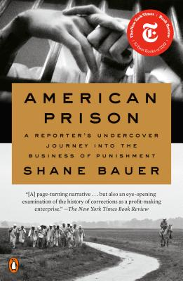 American Prison: A Reporter's Undercover Journey into the Business of Punishment Cover Image