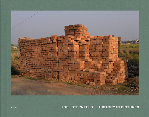 Joel Sternfeld: History in Pictures Cover Image