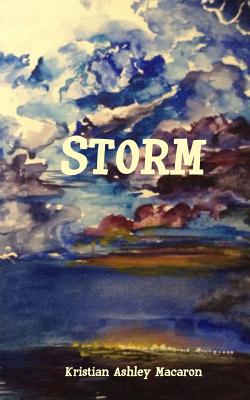 Storm Cover Image