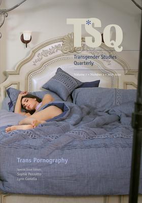 Trans Pornography Cover Image