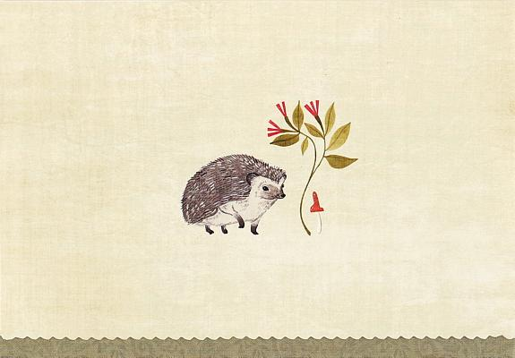 Note Card Hedgehog Cover Image