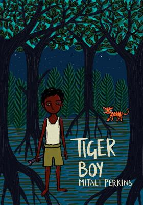 Tiger Boy cover