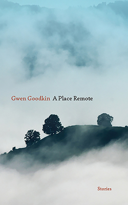 A Place Remote: Stories Cover Image