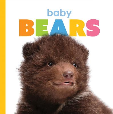 Baby Bears (Starting Out) Cover Image
