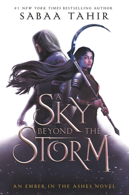 A Sky Beyond the Storm Cover Image