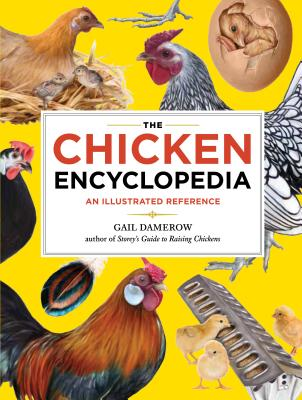 The Chicken Encyclopedia: An Illustrated Reference Cover Image