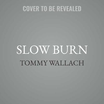 Slow Burn (Anchor & Sophia #2) Cover Image