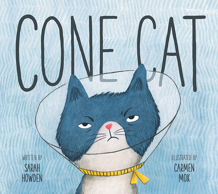 Cone Cat Cover Image