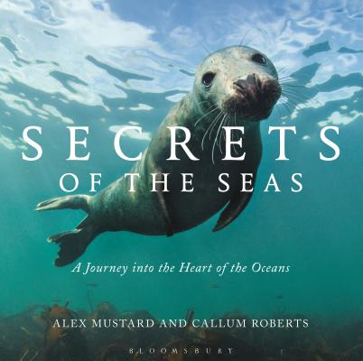 Secrets of the Seas: A journey into the heart of the oceans Cover Image