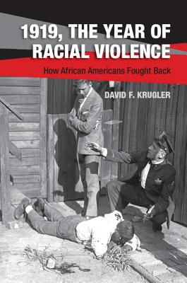1919, The Year of Racial Violence Cover Image