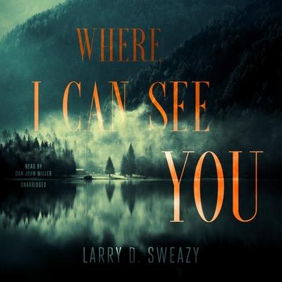 Where I Can See You Lib/E Cover Image