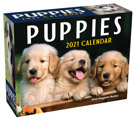 Puppies 2021 Mini Day-to-Day Calendar Cover Image