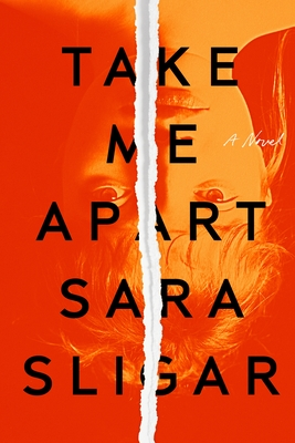 Take Me Apart: A Novel Cover Image