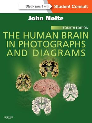 The Human Brain in Photographs and Diagrams Cover Image