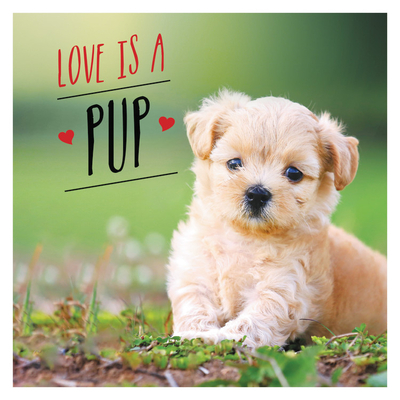 Love is a Pup: A Dog-Tastic Celebration of the World's Cutest Puppies Cover Image