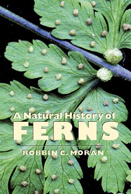 A Natural History of Ferns Cover Image