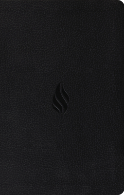 Premium Gift Bible-ESV-Flame Design Cover Image
