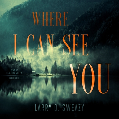 Where I Can See You Cover Image