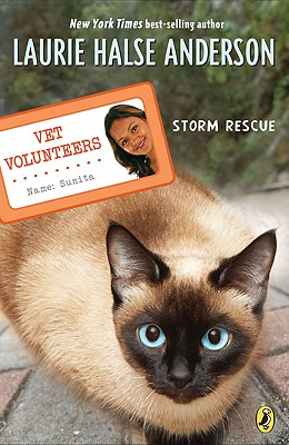 Storm Rescue Cover