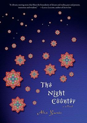 The Night Counter Cover Image