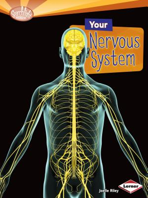 Your Nervous System (Searchlight Books (TM) -- How Does Your Body Work?) Cover Image