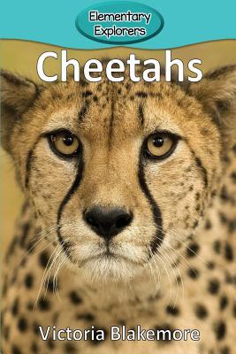 Cheetahs (Elementary Explorers #41) Cover Image