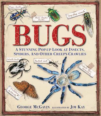 Bugs: A Stunning Pop-up Look at Insects, Spiders, and Other Creepy-Crawlies Cover Image