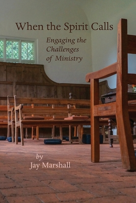 When the Spirit Calls: Engaging the Challenges of Ministry Cover Image