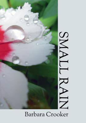Small Rain Cover