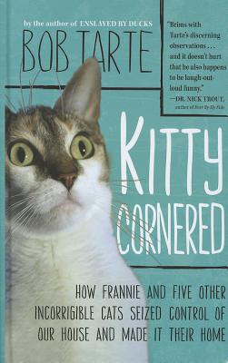 Kitty Cornered Cover