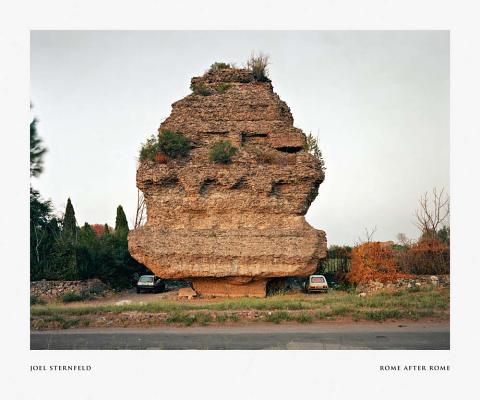 Joel Sternfeld: Rome After Rome Cover Image