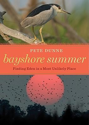 Bayshore Summer Cover