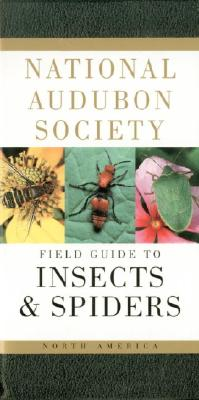 National Audubon Society Field Guide to North American Insects and Spiders Cover