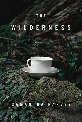 The Wilderness Cover Image