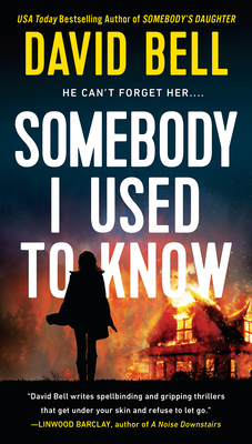Somebody I Use to Know cover image