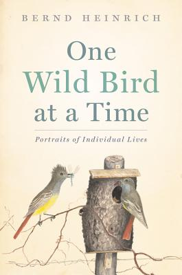 One Wild Bird at a Time: Portraits of Individual Lives Cover Image