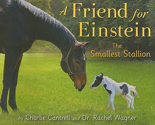 A Friend for Einstein, the Smallest Stallion Cover