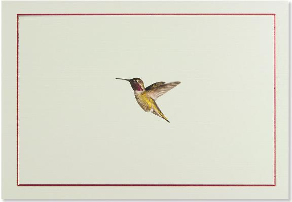 Note Card Hummingbird Flight Cover Image